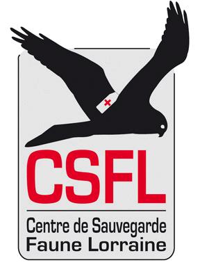logo-csfl-transp