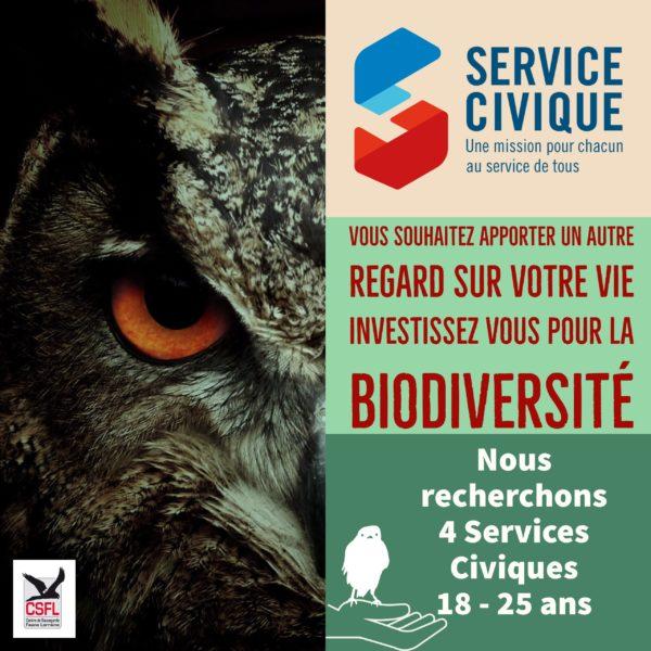 Vous souhaitez apporter un autre regard sur votre vie, investissez vous pour la biodiversité