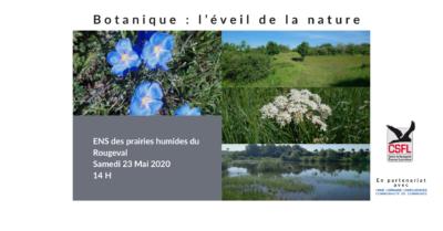 Botanique : l'éveil de la nature