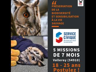 Missions Service Civique : c'est reparti !
