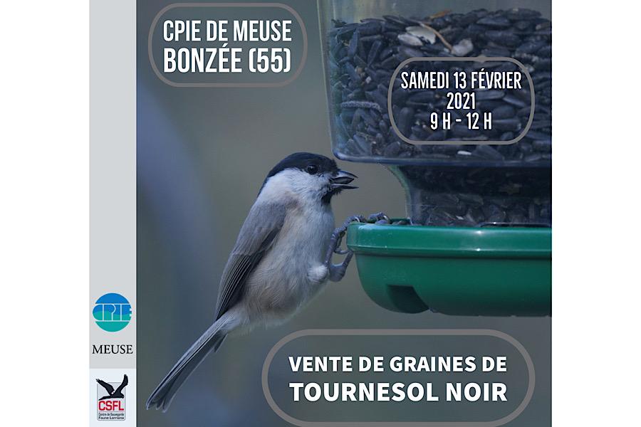Opération vente de tournesol noir avec le CPIE de Meuse sur Bonzée (55)
