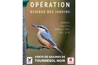 Opération vente de tournesol noir avec l'Adeppa sur Vigy (57)