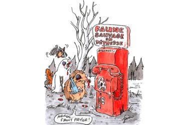 Charlie Hebdo parle des CDS et du CSFL